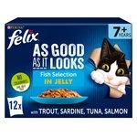 Felix As Good As It Looks Senior Fish