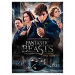 Fantastic Beasts And Where To Find Them DVD (12)